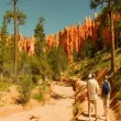 Hikers in Bryce Canyon national Park — Stock Video