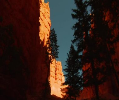 Canyon nel parco nazionale del bryce canyon — Video Stock