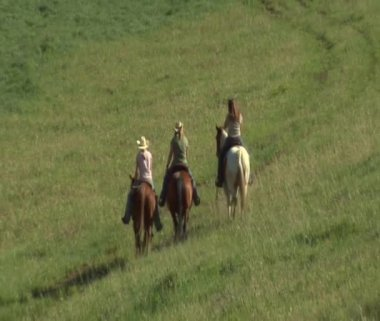 Three young women on horses ride across green meadow — Stok video