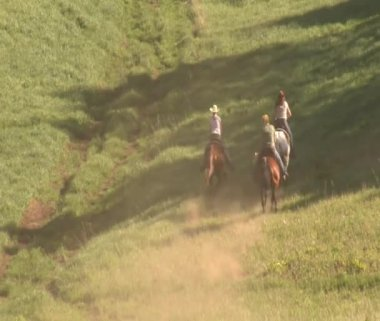 Three young women on horses gallop across green meadow — Stock Video