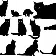 Fourteen cat silhouettes — Stock Vector