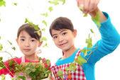 微笑与植物的亚洲女孩 — 图库照片