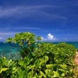Beautiful subtropical Okinawa — Stock Photo