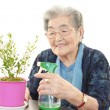 Old woman with plant — Stock Photo