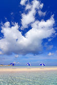The beach and the beach umbrellas of midsummer. — Stock Photo