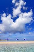 The beach and the beach umbrellas of midsummer. — 图库照片