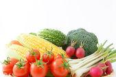 Frisches gemüse — Stockfoto