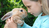 Girl and rabbit — Stock Photo