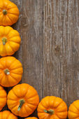 Pumpkins — Foto Stock