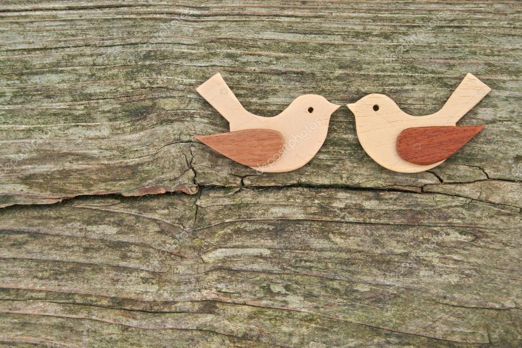 Two birds on wooden ground — Stock Photo #18896299