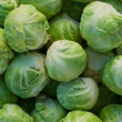 Brussels sprouts — Foto Stock #18963425