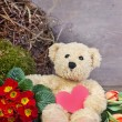 Teddy bear — Stock Photo #20666231