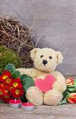 Teddy bear — Stock Photo