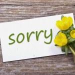 Sorry — Stock Photo