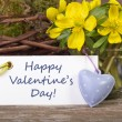 Valentins day — Stock Photo #22421893