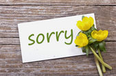 Sorry — Stockfoto