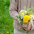 Wild flowers — Stock Photo #25149175