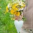 Wild flowers — Stock Photo #25149309