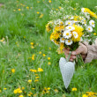 Wild flowers — Stock Photo #25149353