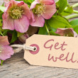 Stock Photo: Get well