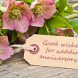 Stock Photo: Wedding anniversary