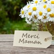 maman Merci — Photo #25379971