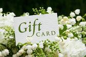 Gift card — Zdjęcie stockowe