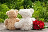 Ursos de pelúcia — Foto Stock