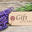 Stock Photo: Gift card
