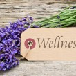 Wellness — Stock Photo