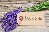 Relax — Photo