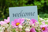 Welcome — Stockfoto