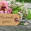 Thank you — Stockfoto