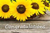 Congratulisi — Foto Stock
