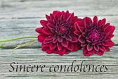 Condolence — Stock Photo