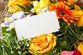 I fiori — Foto Stock