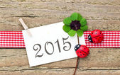 2015 — Stock Photo