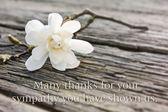 Mourning card — Stock Photo