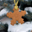 Snowflake shape gingerbread on the Christmas Tree — Stock Photo #18365745
