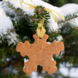 Snowflake shape gingerbread cookie — Stock Photo #18365801