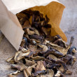 Mixed dried mushrooms (Porcini) — Stock Photo