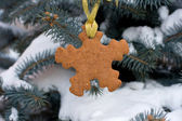 Snowflake shape gingerbread on the Christmas Tree — Stock Photo