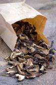 Mixed dried mushrooms (Porcini) — Stock Photo