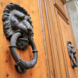 Lion Head Door Knocker — Stock Photo #19029485