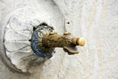 Antique Water Pump in the form of a duck — Stock Photo