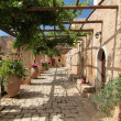 Garden Courtyard with flowers in ceramic pots - Stok fotoğraf