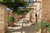 Garden Courtyard with flowers in ceramic pots — Stok fotoğraf