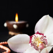 Orchid flower, coral beads and a burning candle on a black backg — Stock Photo