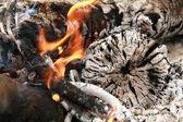 Bonfire with ash — Stock Photo