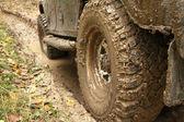 Les roues de la voiture dans la boue dans la forêt — Photo